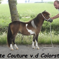 Haute Couture vd Colorstable