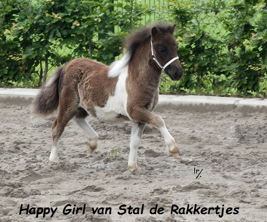 Happy Girl v St de Rakkertjes.jpg